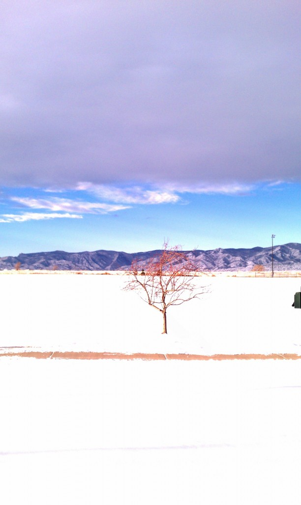 Redstone Park Highlands Ranch 1/1/11