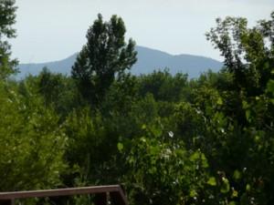 mountain view in south platte park littleton