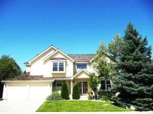 highlands ranch home on chestnut hill 80130