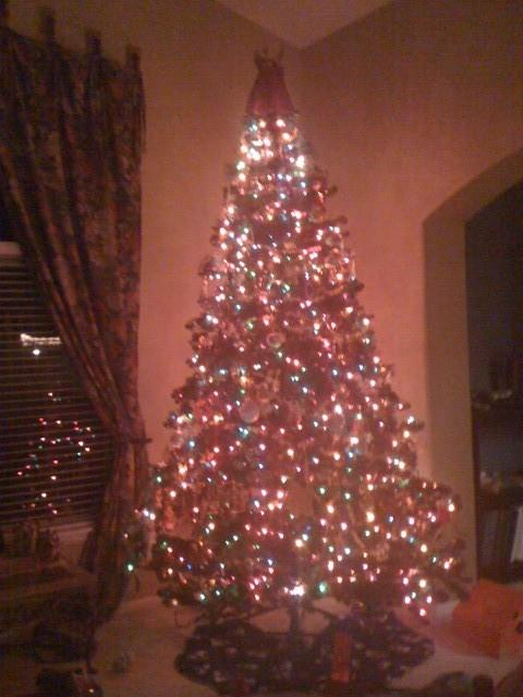 highlands ranch christmas tree