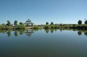 Pond at Redstone Park in Highlands Ranch