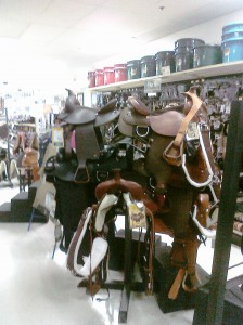 horse saddles at murdochs littleton co