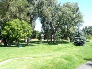 Sterne Park lawn
